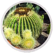 Blooming Cactus Two Round Beach Towel