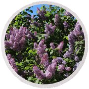 Blooming Lilacs Round Beach Towel