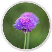 Blooming Onion Chives Round Beach Towel