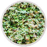 Blooming Shrubs  Round Beach Towel