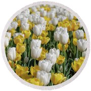 Blooming Tulips As Far As The Eye Can See Round Beach Towel