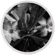 Bloomisted Round Beach Towel