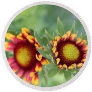 Blooms Of Color Round Beach Towel