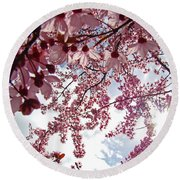 Blossom Artwork Spring Flowers Art Prints Giclee Round Beach Towel