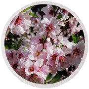Blossoming Almond Branch Round Beach Towel