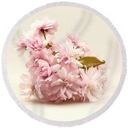Blossoming Cherry Twig Round Beach Towel