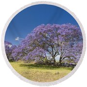 Blossoming Jacaranda Round Beach Towel