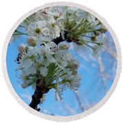 Blossoming Pear Round Beach Towel