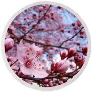 Blossoms Art Blue Sky Spring Tree Blossoms Pink Giclee Baslee Troutman Round Beach Towel
