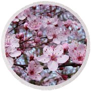 Blossoms Art Prints Nature Pink Tree Blossoms Baslee Troutman Round Beach Towel