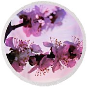 Blossoms At Sunset Round Beach Towel
