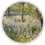 Blossoms Growing In A Fruit Orchard In Round Beach Towel