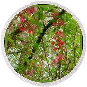 Blossoms Of Spring Time Round Beach Towel