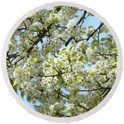 Blossoms Whtie Tree Blossoms 29 Nature Art Prints Spring Art Round Beach Towel