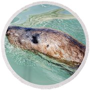 Blowing Bubbles Round Beach Towel