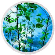 Nature's Gifts Of Blue And Green Round Beach Towel