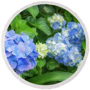 Blue And Yellow Hortensia Flowers Round Beach Towel