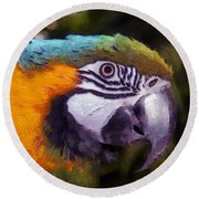 Blue-and-yellow Macaw Round Beach Towel