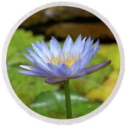 Blue And Yellow Water Lily Round Beach Towel