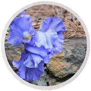 Blue Angel - Iris Round Beach Towel