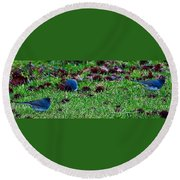 Blue Birds In Winter Round Beach Towel