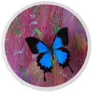 Blue Butterfly On Colorful Wooden Wall Round Beach Towel