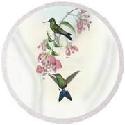 Blue-capped Puffleg Hummingbird Eriocnemis Glaucopoides Round Beach Towel by John and Elizabeth Gould