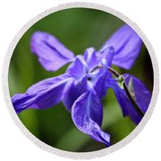 Blue Columbine Round Beach Towel