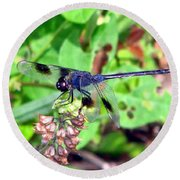 Blue Dasher Round Beach Towel