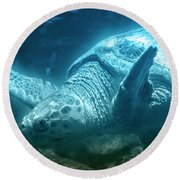 Blue Depths Sea Turtle Round Beach Towel