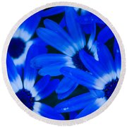 Blue Daisies, Medford Oregon Round Beach Towel