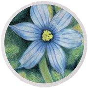 Blue Eyed Grass - 1 Round Beach Towel