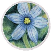 Blue Eyed Grass - 1 Round Beach Towel