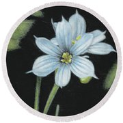 Blue Eyed Grass - 2 Round Beach Towel