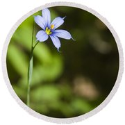 Blue-eyed Grass IIi Round Beach Towel
