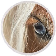 Blue Eyed Horse Round Beach Towel