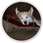 Blue Eyes Round Beach Towel by Colleen Taylor