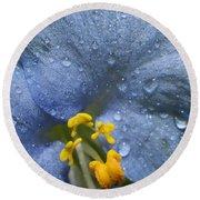 Blue Spring Flower Round Beach Towel