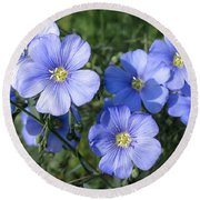 Blue Flowers In The Sun Round Beach Towel