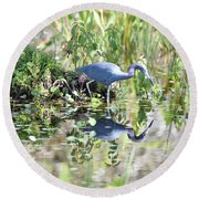 Blue Heron Fishing In A Pond In Bright Daylight Round Beach Towel