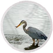 Blue Heron Fishing Round Beach Towel