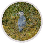 Blue Heron In The Autumn Colours Round Beach Towel