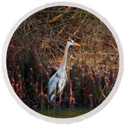 Blue Heron In The Cypress Knees Round Beach Towel