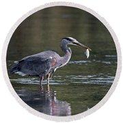 Blue Heron Snack Round Beach Towel
