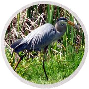 Blue Heron With Lunch Round Beach Towel