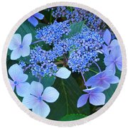 Blue Hydrangea Flowers Floral Art Baslee Troutman Round Beach Towel