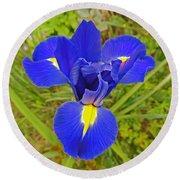 Blue Iris Beauty Round Beach Towel