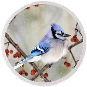 Blue Jay In Snowfall 3 Round Beach Towel