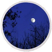 Blue Moon Among The Tree Tops Round Beach Towel