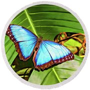 Blue Morpho Butterfly 2 - Paint Round Beach Towel